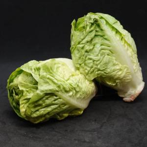 Lettuce Lt Gem (x2)