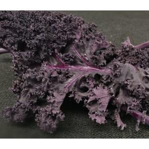 Purple Kale Kg