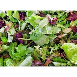Mix Salad 500g
