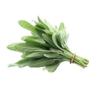 Fresh Sage 50g