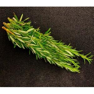Fresh Rosemary 50g