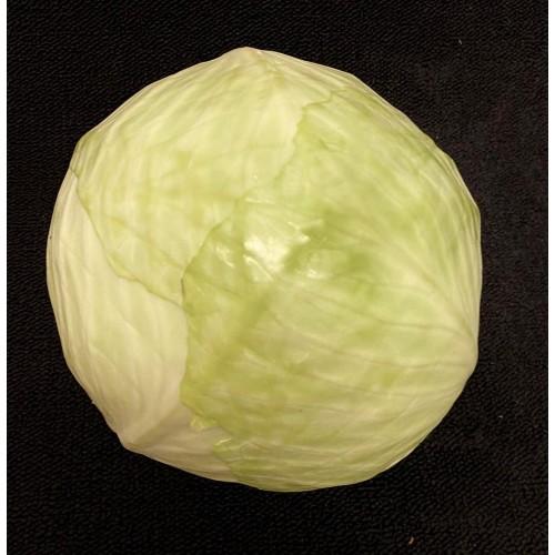 Cabbage White Each